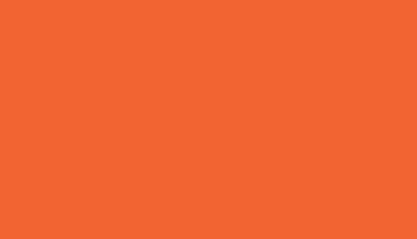 Bronco Gang